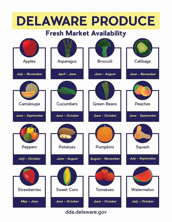 Delaware Product Fresh Market Availability