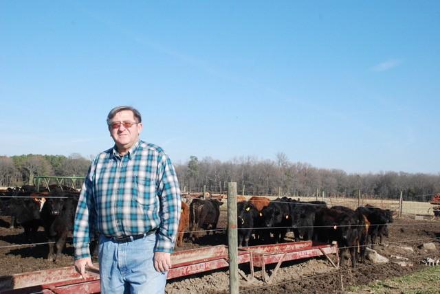 Richard and cows.jpg